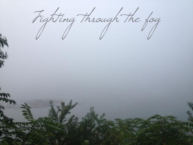 Foggy reservoir