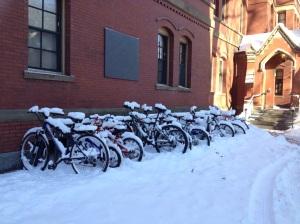 Bikes in the snow. My baby blue has been inside throughout all of this.