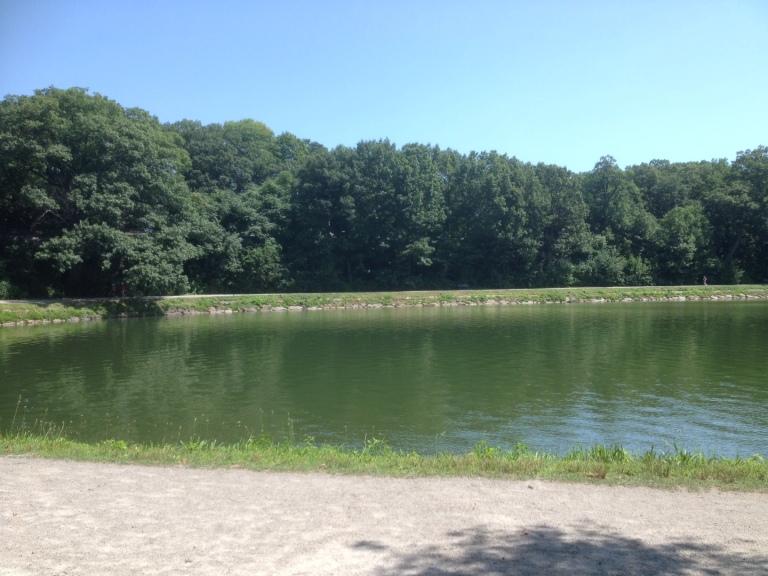 The reservoir, looking surprisingly green!