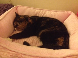 Callie, asleep in her princess bed.