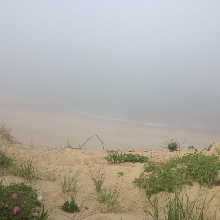 Marconi Point on Cape Cod - the fog had rolled in, making everything seem other-worldly.  It was a very big drop down to the water.
