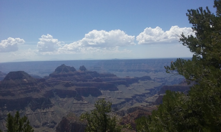 Grand Canyon, North Rim. I love taking pics with trees in the foreground for scale. The clouds were gorgeous.