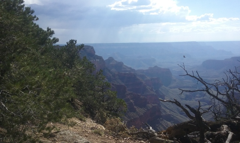 Um, yeah... The Grand Canyon is 78 miles from where i live.