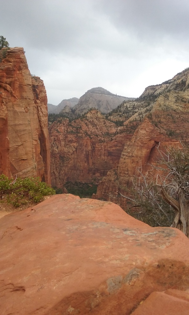 the view from Scout's Lookout on the Angel's Landing Trail at Zion