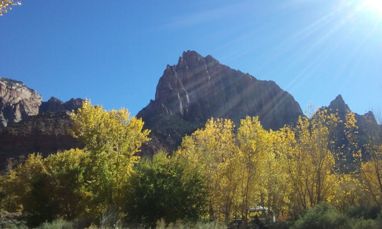 My lunchtime view - close to the Visitor Center at Zion. I *think* that rock formation is called The Watchman because it overlooks the Watchman Campground.