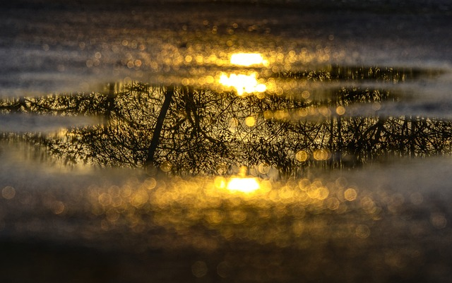 water-puddle-2975541_640.jpg